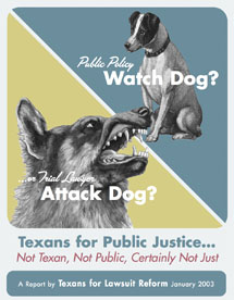 Texans for Public Justice…